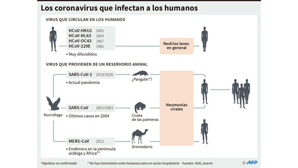 coronavirus_humanos