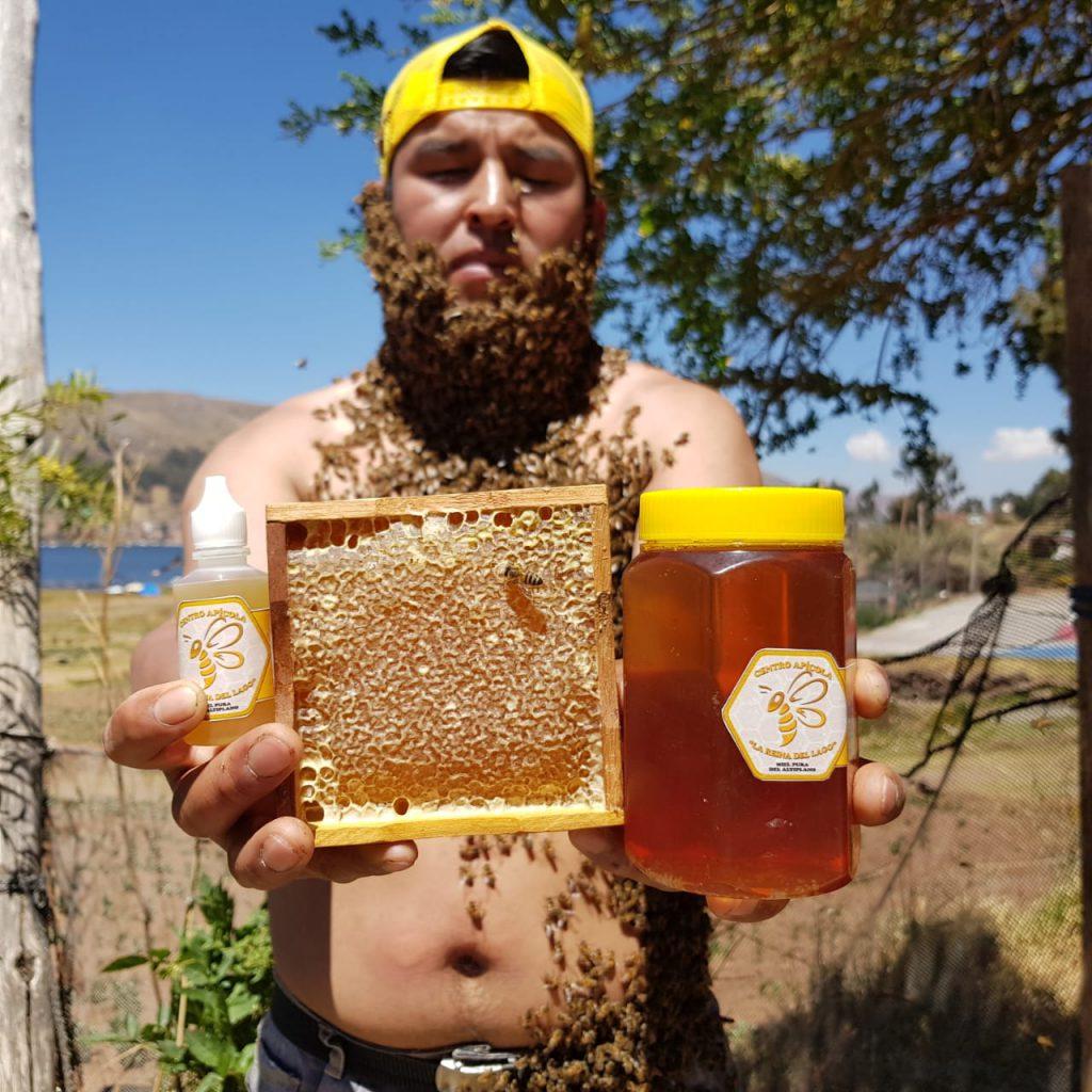 Estas abejas son una auténticas guerreras que han logrado superar el cambio climático moviéndose a altitudes que parecían imposibles para ellas.